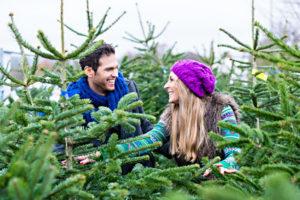 Junges Pärchen wählt zwischen verschiedenen Weihnachtsbäumen