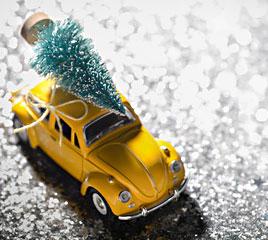 wie transportiert man am besten einen weihnachtsbaum weihnachtsbaum online. Black Bedroom Furniture Sets. Home Design Ideas